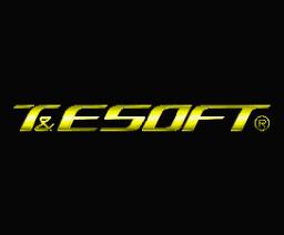 T&ESOFT Logo