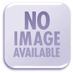 Ponyca Land flyer - Pony Canyon
