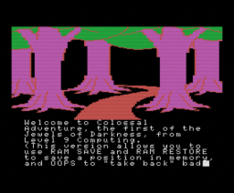 Colossal Adventure (1983, MSX, Level 9 Computing)