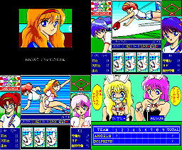 Doki Doki Card League (1990, MSX2, Great)
